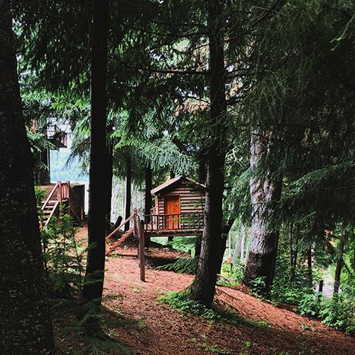 Titelbild der Station Das Baumhaus-Projekt